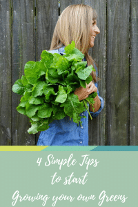 Pinterest 4 tips to growing greens