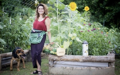 Fall Garden To Do's : 7 Steps to Get Your Garden Ready for Fall