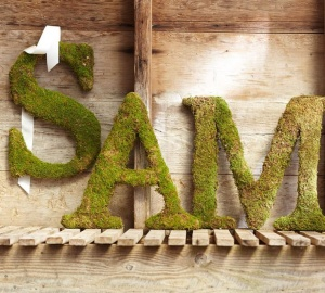 Fresh Moss Letters from Pottery Barn