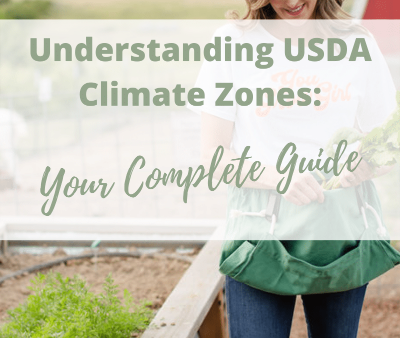 Understanding USDA Climate Zones: Your Complete Guide